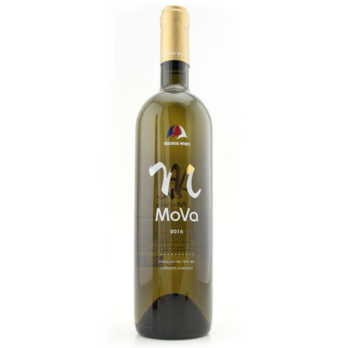 PORTFOLIO-WINE, STYLEGLASS